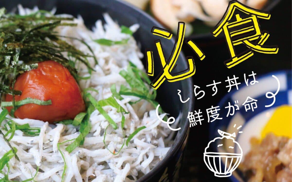 必食「しらす丼」は鮮度が命!